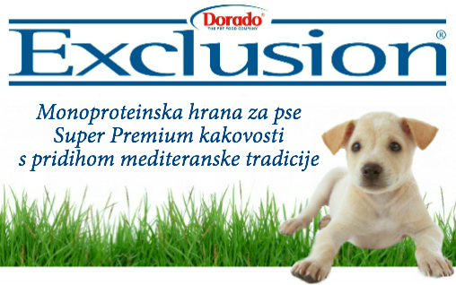 Banner_SLONCEK_Exclusion_508x318